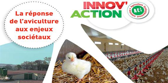 Innov' Action special Aviculture