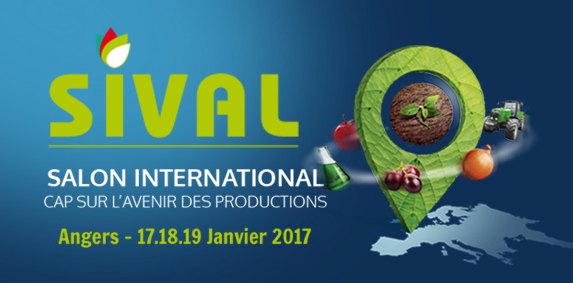 SIVAL 2017